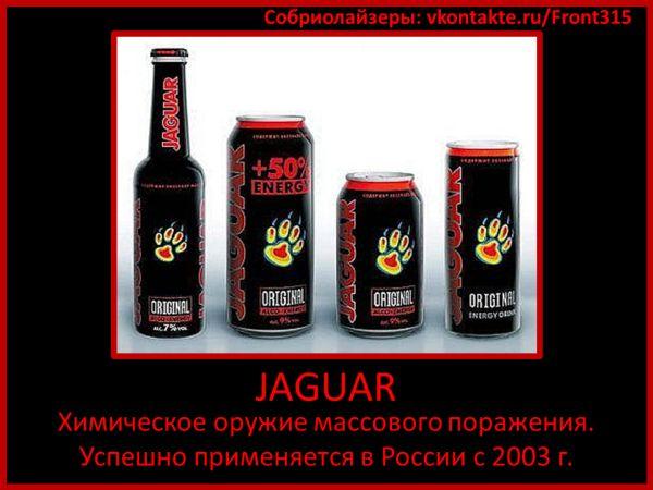 Вред ягуара, вред напитка ягуар, напиток ягуар, напиток ягуар ...