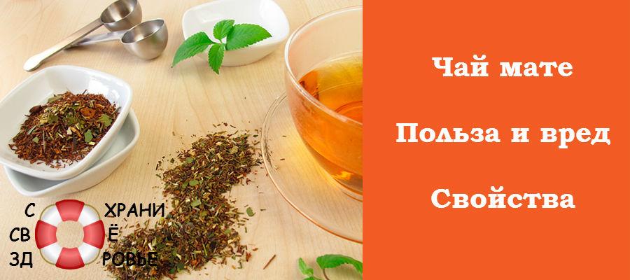 Чай чаи ройбуш матэ мате польза полезные свойства
